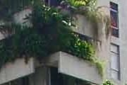 natura-toma-conta-th
