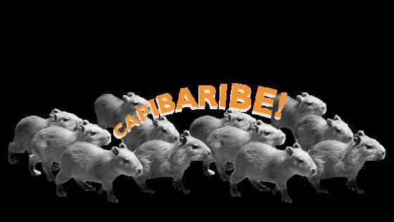 Capivaras Eu Capibaribe