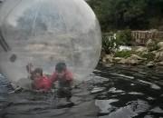 bolha-rio-onca